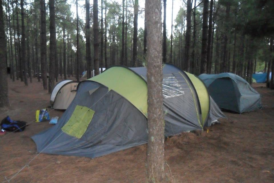 Cabildo opens a portal to manage online permits for camping areas