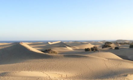 Masdunas plan to move 60,000 m3 of sand from Maspalomas to Playa del Inglés