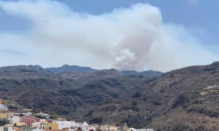 Firefighters battle blaze at the summits of Gran Canaria