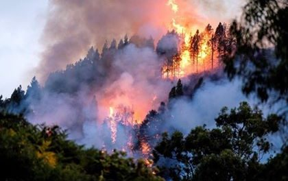Gran Canaria Fires: could be 60km2 burned, 8,000 evacuated, no injuries, but many houses lost