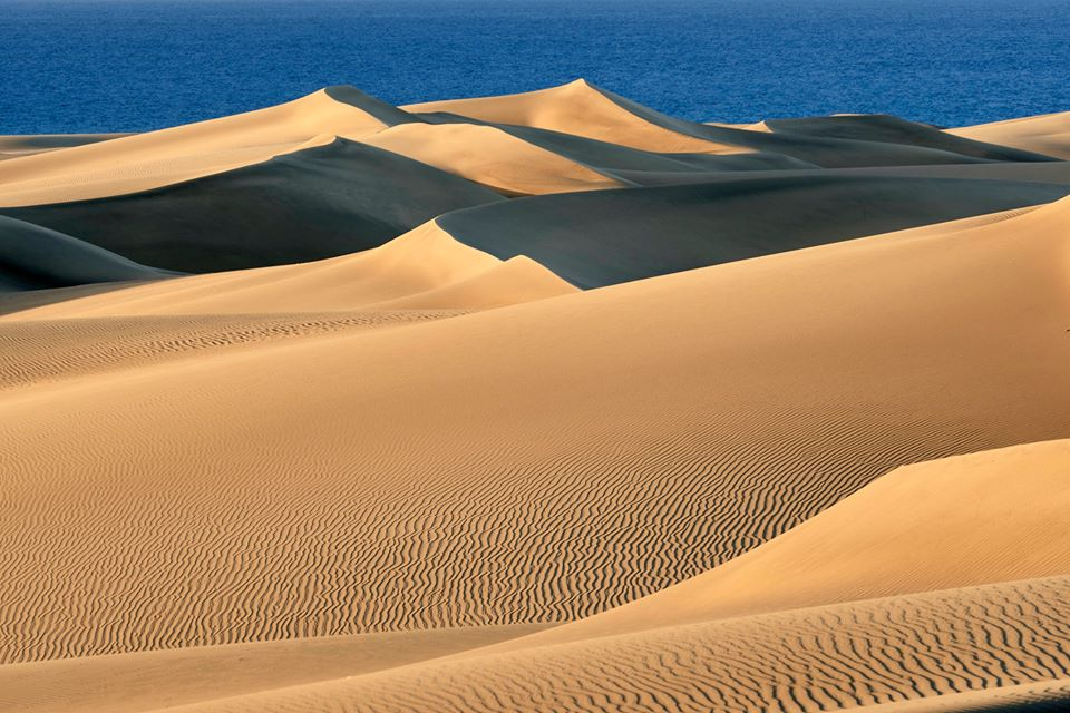 Maspalomas Dunes recover to look more like the dreamy landscape it was 50 years ago, before mass tourism