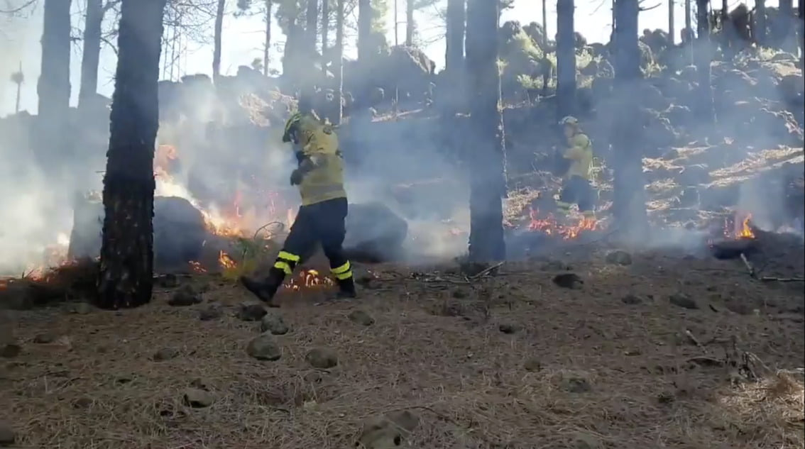 Cabildo de Gran Canaria & firefighters carry out controlled burns at summits