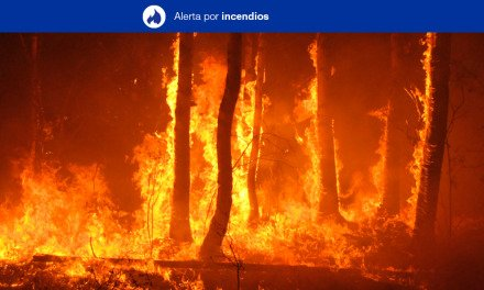 Forest Fire Risk Alert for Saturday 23 May on Gran Canaria, and the western Canary Islands