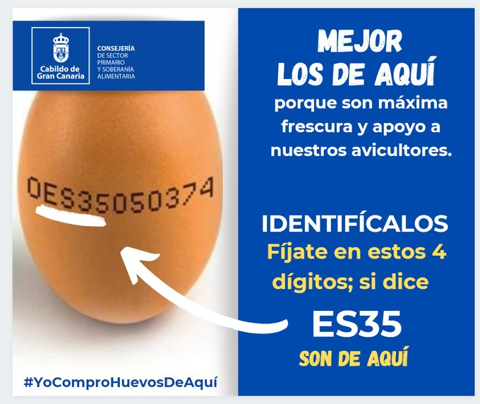 How to identify the freshest Gran Canaria eggs, and ensure they are humanely produced