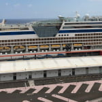 The Government of the Canary Islands has authorised cruise ships to operate between the Canarian ports
