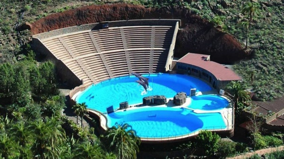 Illegally built tanks for dolphins at Palmitos Park cannot be legalised after the fact