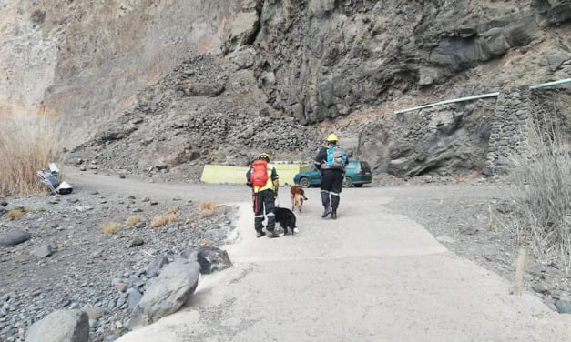 Search team rescue dogs verify that no-one was caught in La Gomera landslide