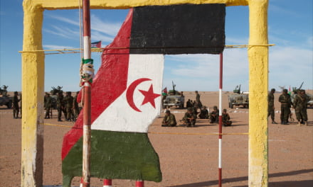 Fighting breaks out in Western Sahara as tensions escalate between Polisario Front and Moroccan occupying forces