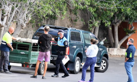 Six potentially dangerous dogs seized by Mogán local Police in Playa del Cura