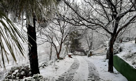 The highest summits of Gran Canaria remain closed to traffic due to snow and bad weather