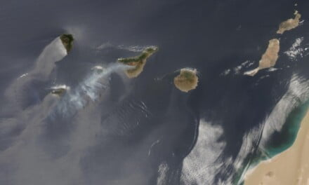 The Tenerife forest fire in Arico evolving favourably, although it remains uncontrolled