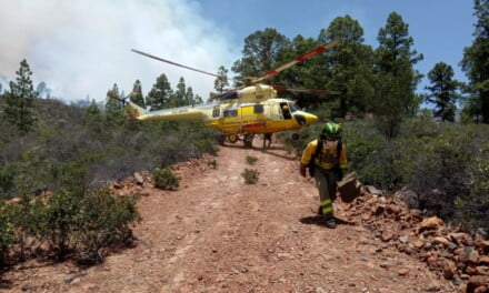 #IFArico: Tenerife Forest Fire has already burned more than 1500 hectares (6000 acres)