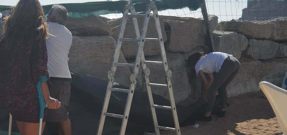 Tauro Beach residents take matters into their own hands to #RemoveTheFences
