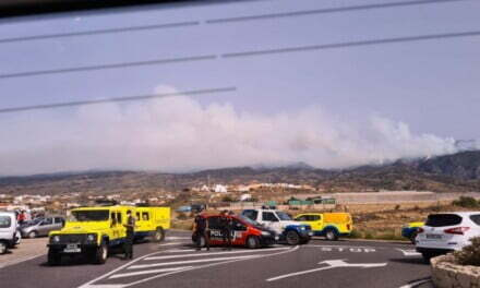 #IFArico: Gran Canaria firefighters help more than 300 fire fighters with the Tenerife forest fire which continues uncontrolled
