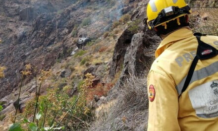 Cabildo declares alert for the risk of forest fires in the midlands and summits of Gran Canaria