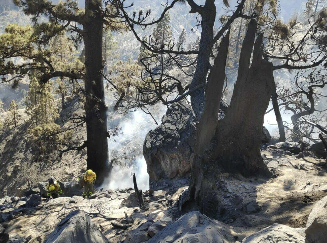 Smoke and Soot and smouldering forest: teams work to extinguish the Arico fire
