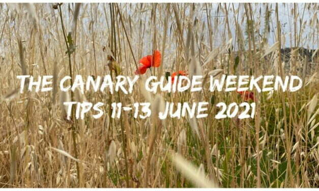 The Canary Guide Weekend Tips 11-13 June 2021