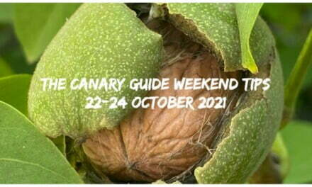 The Canary Guide Weekend Tips 22-24 October 2021